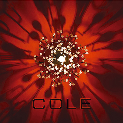 cole gatefold cover 400